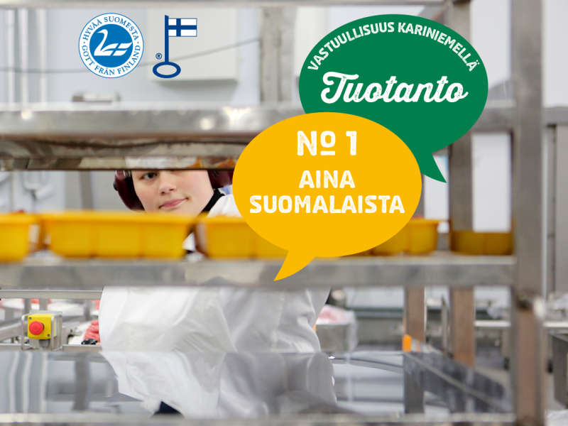 1) Aina suomalaista
